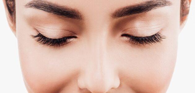 woman closeup eyebrow and eyelash